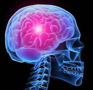 Cara Penyembuhan Kista Di Otak